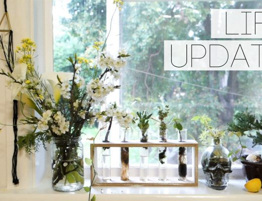 life update lillytales